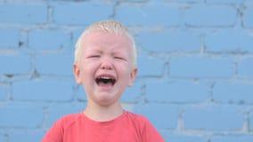 Weinig blonde jongen in rode T-shirt schreeuwt met scheuren tegen grijze bakstenen muur stock videobeelden