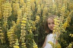 Weinig blonde meisje in gele lupines royalty-vrije stock afbeelding