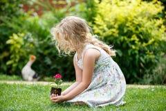 Weinig blondemeisje die jonge bloeminstallatie in handen op groene achtergrond houden stock foto