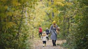 Weinig blondemeisje met haar mama loopt in de steeg van het de herfstpark, sportmannenlooppas bij achtergrond stock video