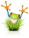 Weinig boomkikker op gras Royalty-vrije Stock Afbeeldingen