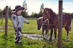 Weinig cowboy en poney Stock Afbeelding