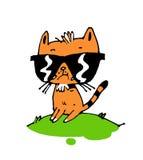 Weinig dierlijke kat Stock Foto's