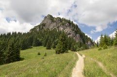 Weinig Fatra-de bergen, Lesser Fatra-bergen, nationaal park in de zomer, zetten genoemde Maly Rozsutec op stock afbeelding
