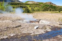 Weinig Geiser in hete de lentevallei van Haukadalur Royalty-vrije Stock Afbeeldingen