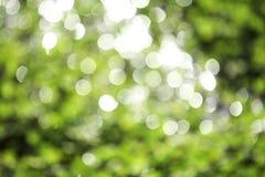 Weinig groene bokeh Stock Foto's