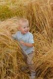 Weinig het glimlachen jongenszitting in een tarwe op het gebied Stock Foto