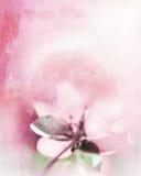Weinig het schilderen bloem royalty-vrije illustratie