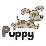 Weinig hond of puppy, voor ABC Alfabet P Royalty-vrije Stock Foto