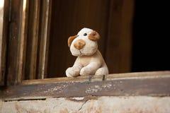 Weinig hondstuk speelgoed Stock Foto's