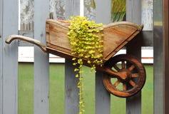 Weinig houten kruiwagen voor bloemen Stock Foto