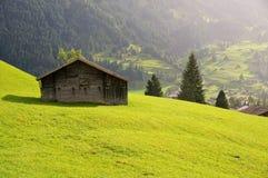 Weinig huis en groen gebied met de berg als achtergrond in de regenachtige dag Grindelwald, Zwitserland Stock Foto's