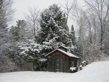 Weinig huis in het bos stock afbeeldingen