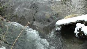 Weinig ijzige kreek door het sneeuwland stock videobeelden