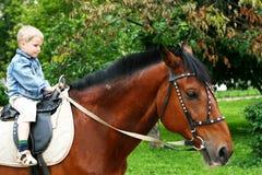 Weinig jong geitje op groot paard Royalty-vrije Stock Afbeelding