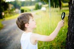 Weinig jongen bekijkt een boom door een vergrootglas Stock Foto's
