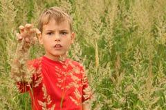 Weinig jongen bevindt zich in hoog groen gras stock afbeelding