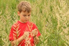 Weinig jongen bevindt zich in hoog groen gras royalty-vrije stock afbeeldingen