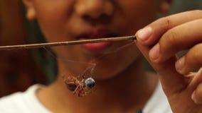 Weinig jongen beweegt tot spinnen om te vechten stock videobeelden