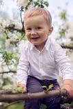 Weinig jongen blond in een wit overhemd en een blauwe broek die op gebloeide boom zitten Stock Foto's
