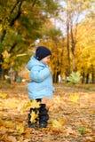 Weinig jongen in de herfstpark Royalty-vrije Stock Foto's