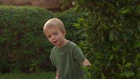 Weinig jongen die achter een boom, langzame motie verbergen stock video