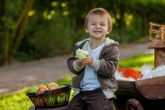 Weinig jongen die appelen eten  Stock Afbeelding