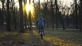 Weinig jongen die de fiets in het park, zonsondergangpark, langzame motie berijden stock videobeelden