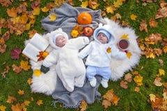 Weinig jongen die in de herfstpark ontspannen royalty-vrije stock afbeeldingen