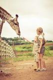 Weinig jongen die een giraf voeden bij de dierentuin Royalty-vrije Stock Foto