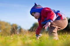 Weinig jongen die eerste stappen op het gras maakt stock afbeeldingen