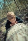 Weinig jongen die en een boom controleren inspecteren royalty-vrije stock afbeelding