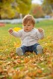 Weinig jongen die in het de herfstpark spelen Royalty-vrije Stock Foto's