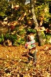 Weinig jongen die met de herfstbladeren speelt Stock Afbeelding