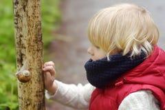 Weinig jongen die op grote slak tijdens stijging in boskleuterkind kijken onderzoekt aard In openlucht het ontplooien van activit stock foto