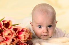 Weinig jongen die op maag dichtbij een boeket van tulpen en het kijken liggen Royalty-vrije Stock Afbeelding