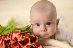 Weinig jongen die op maag dichtbij een boeket van tulpen en het kijken liggen Stock Foto's