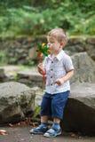Weinig jongen die in park met windmolenvuurrad spelen royalty-vrije stock afbeeldingen