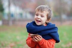 Weinig jongen in een park Royalty-vrije Stock Foto's