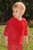Weinig jongen in een park Royalty-vrije Stock Fotografie