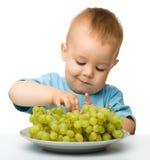 Weinig jongen eet druiven Stock Foto's