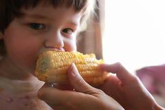 Weinig jongen eet greedily het bijten graan Royalty-vrije Stock Fotografie