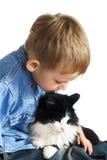 Weinig jongen en kat Royalty-vrije Stock Afbeeldingen
