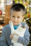 Weinig jongen en kat Stock Afbeelding
