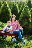 weinig jongen en mamma met rode wagen in pijnboomhout Het kind kiest een Kerstboom royalty-vrije stock afbeeldingen