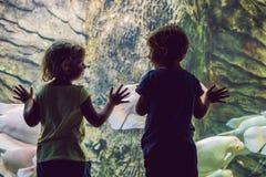 Weinig jongen en meisje die op tropisch koraal letten vissen in grote overzeese het levenstank Jonge geitjes bij het dierentuinaq stock afbeelding