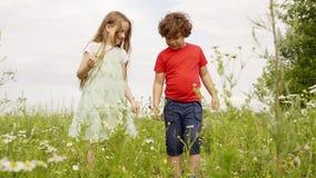 Weinig jongen en meisje wat betreft klis bloeien bij gang op groen de zomergebied Jonge broer en zuster die het bloeien kijken stock videobeelden