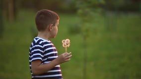 Weinig jongen en meisjeslooppas en spel Zij blazen paardebloem Zonsondergang stock videobeelden