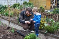 Weinig jongen en zijn vader die zaden in moestuin planten Stock Afbeeldingen