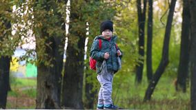 Weinig jongen in GLB en met rugzak loopt in de herfst stock footage